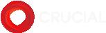 Crucial Web Hosting Logo